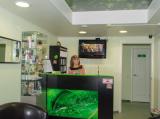 Клиника Мирра-дент, фото №2